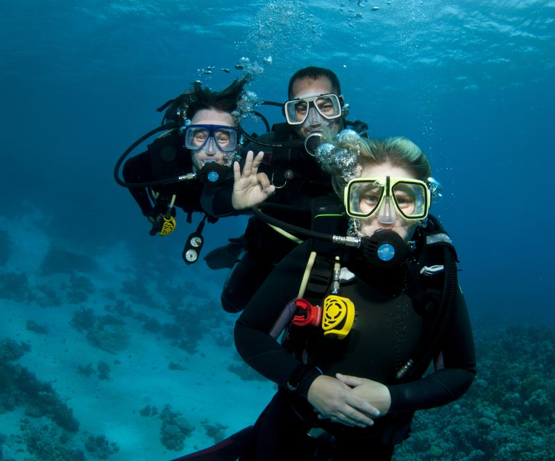 group of divers
