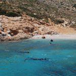 4fa7e6c221e32_snorkeling_in_our_bay