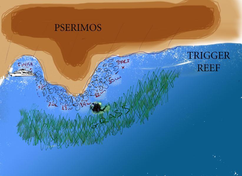 Trigger_Reef