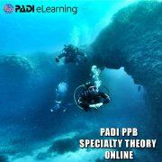 PPB_1000x